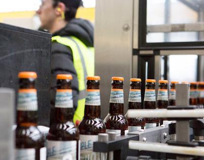 Image of beer on conveyor belt